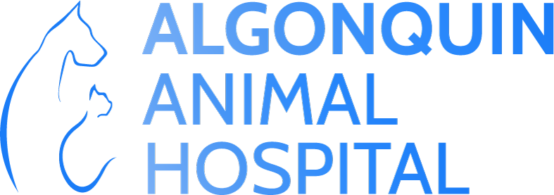 Algonquin Animal Hospital