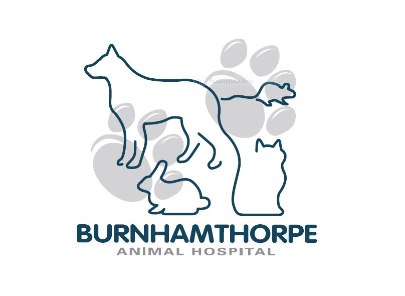 Burnhamthorpe Animal Hospital