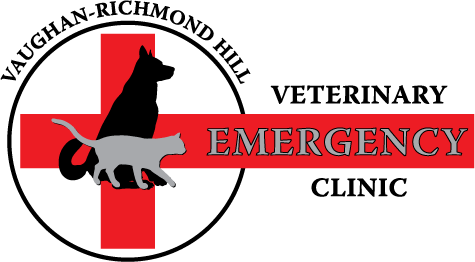 Vaughan Richmond Hill Veterinary Emergency Clinic