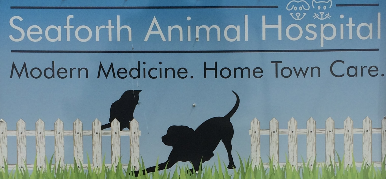 Bayfield Veterinary Services and Seaforth Animal Hospital