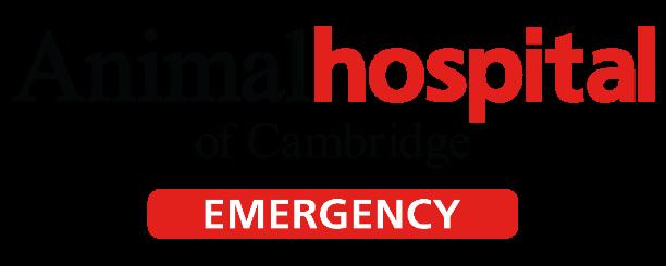 Animal Hospital of Cambridge