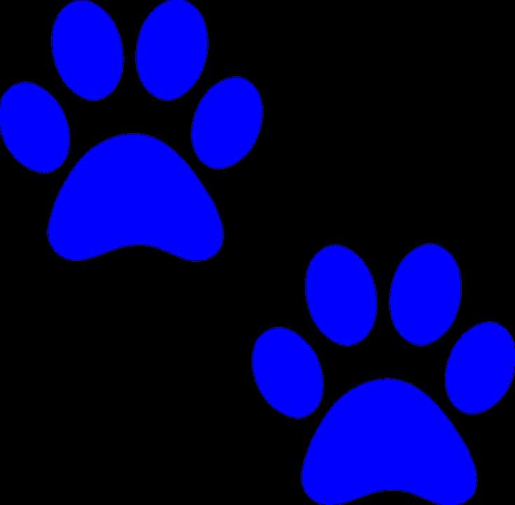 Renfrew Animal Hospital