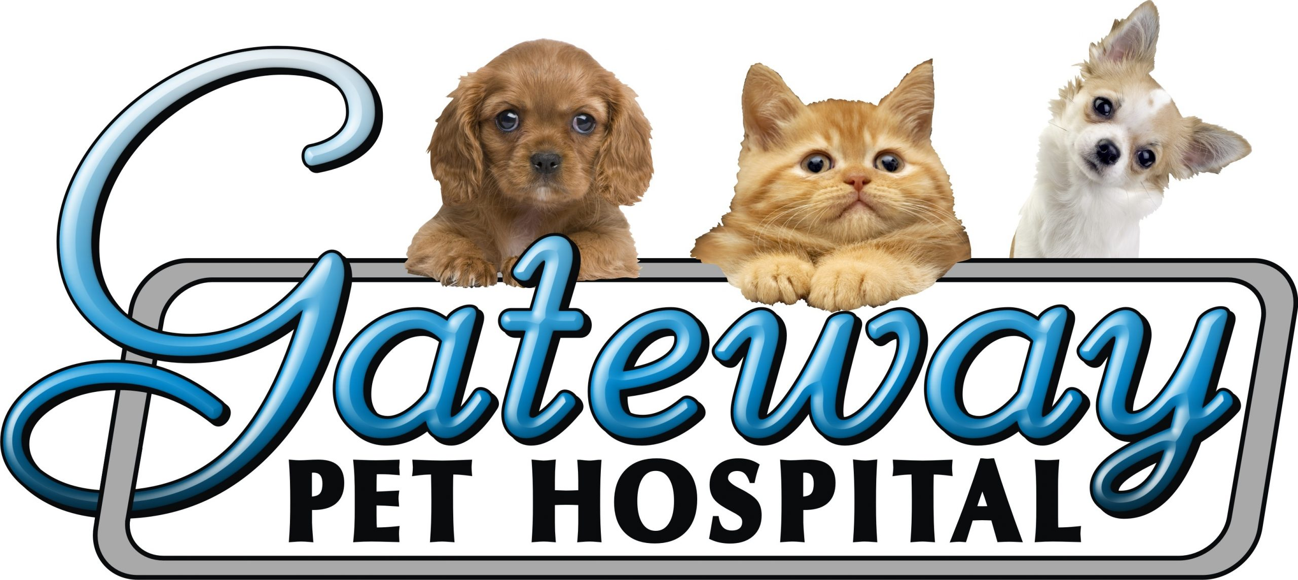 Gateway Pet Hospital