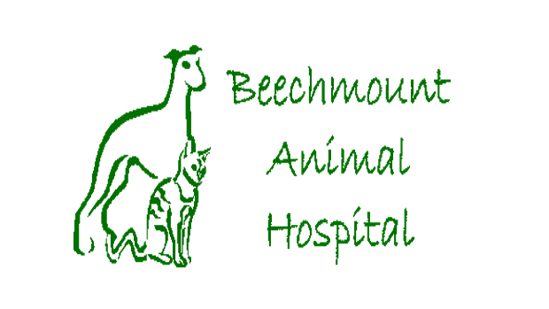 Beechmount Animal Hospital