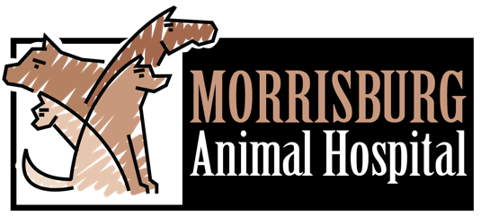 Morrisburg Animal Hospital