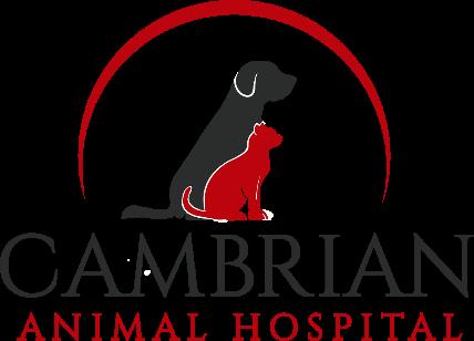 Cambrian Animal Hospital