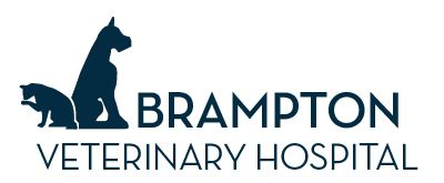 Brampton Veterinary Hospital