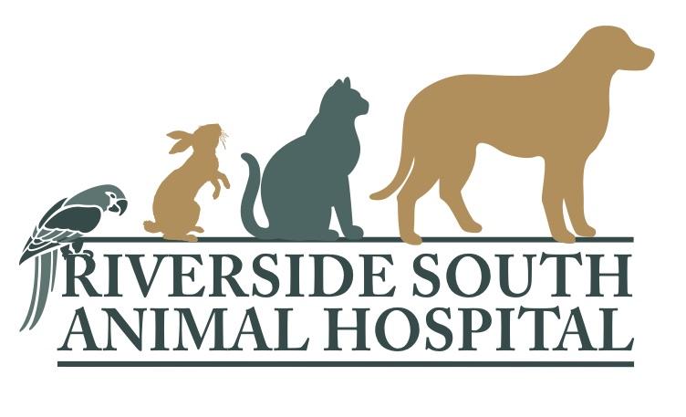 Riverside South Animal Hospital